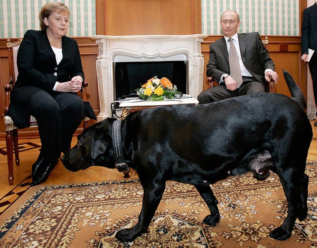 普丁是梅克爾總理任內最為難纏,兩人交手最多次的「勁敵」,圖為2007年1月,梅克...