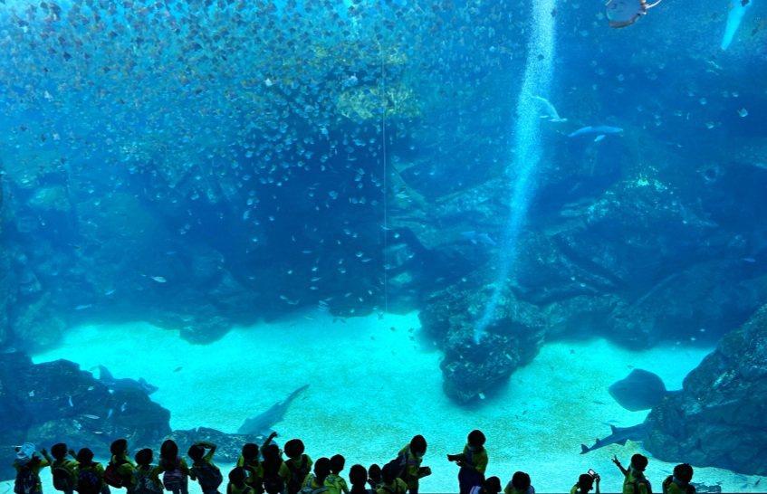 Xpark在加倍愛桃園活動中很受歡迎。圖/桃園市觀光旅遊局提供