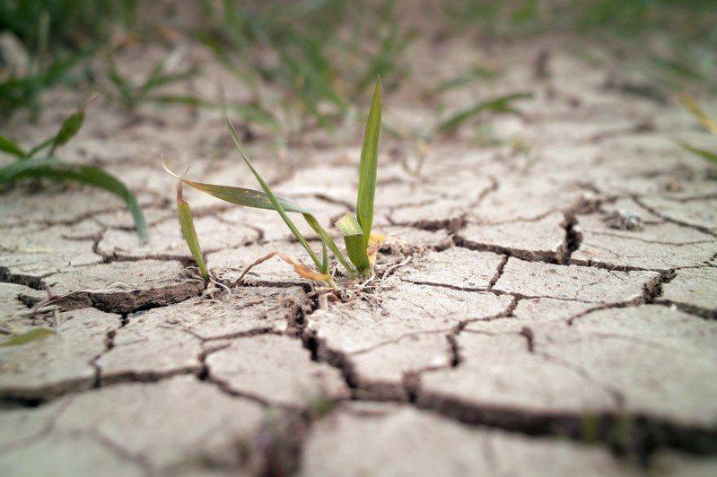 「長期來看,未來下雨的情況,臺灣的水資源、自然災害的情況都容不樂觀。」許晃雄認為,依據氣候變遷推估的情境,雖然本次為號稱百年一遇的大旱,但未來類似的旱象極可能更加頻繁。 圖│iStock