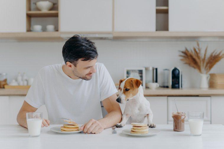 照顧好狗狗是飼主的責任。ingimage