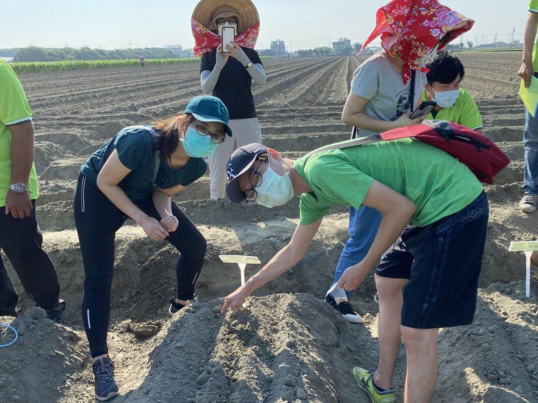 活力東勢VDS攜手民眾撒下幸福種子,盼來年胡蘿蔔豐收。 吳青常/攝影