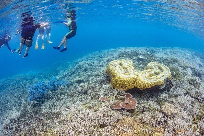 帛琉示意圖。圖/KKday提供