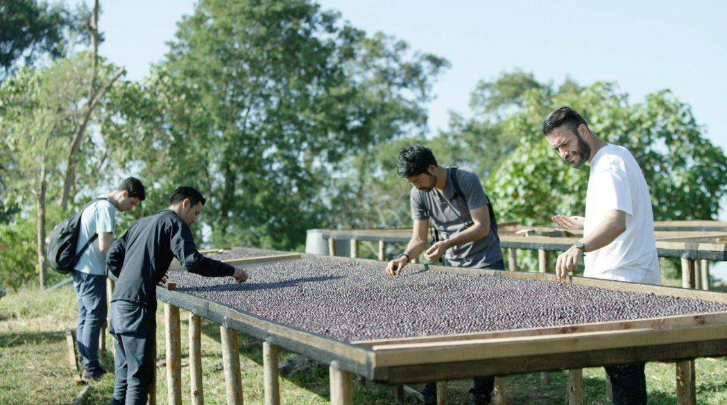 因英語流利,王策在上海時期常被派至各咖啡產區出差,也為他累積更多咖啡知識。圖/王...