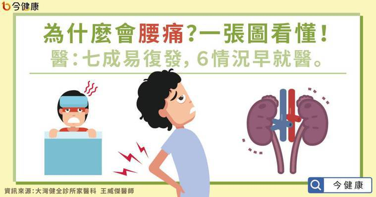 為什麼會腰痛?一張圖看懂!醫:6情況早就醫,七成易復發。 圖/今健康提供