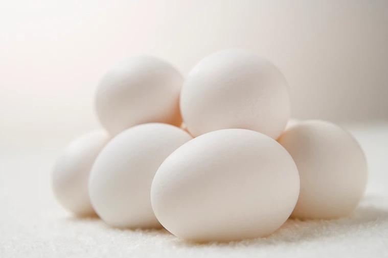 換季關節容易「卡卡的」,攝取好的蛋白質有助於保持肌肉、筋骨、關節的活力。  圖...
