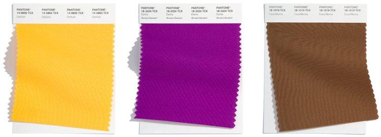 圖/微新聞提供 (左而右)水仙花黃、大麗花紫、可可摩卡。source:panto...