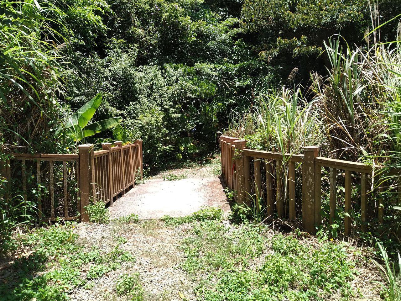 三空泉登山步道中的一條小橋,給人一種進入秘境的感覺。  圖/新北市觀旅局提供