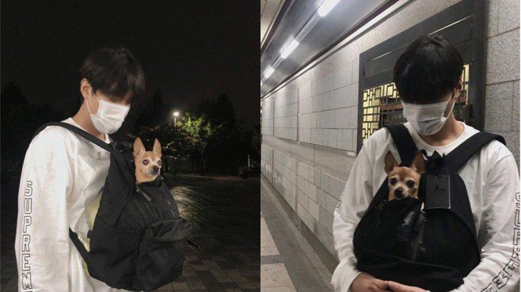 李敏鎬帶著嬌小的Choco出門散步。圖/取自IG