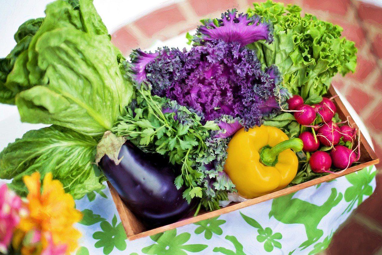 人體本身無法製造植化素,必須藉由攝取食物而獲得。 圖/聯安醫周刊