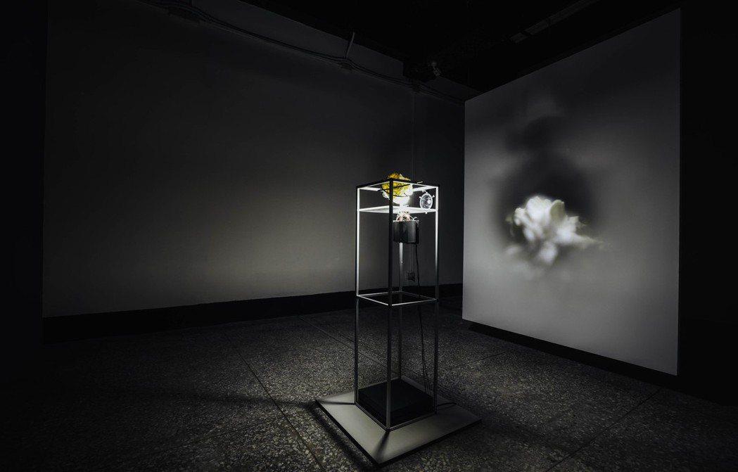 德國互動設計師與媒體藝術家麥可柏克、安卡特琳可蘭茲的作品《克卜勒之夢》。 圖/吳...