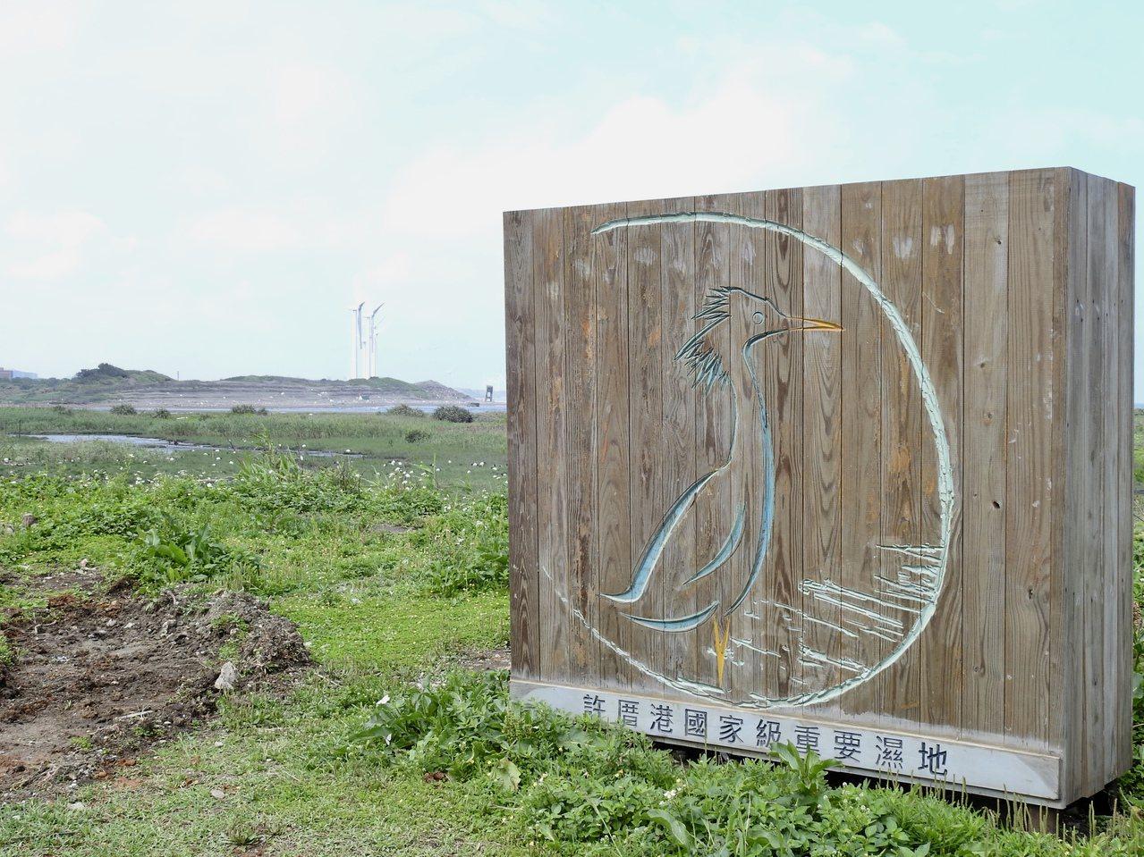 許厝港國家級重要濕地位於桃園市大園區濱海。 圖/曾健祐 攝影