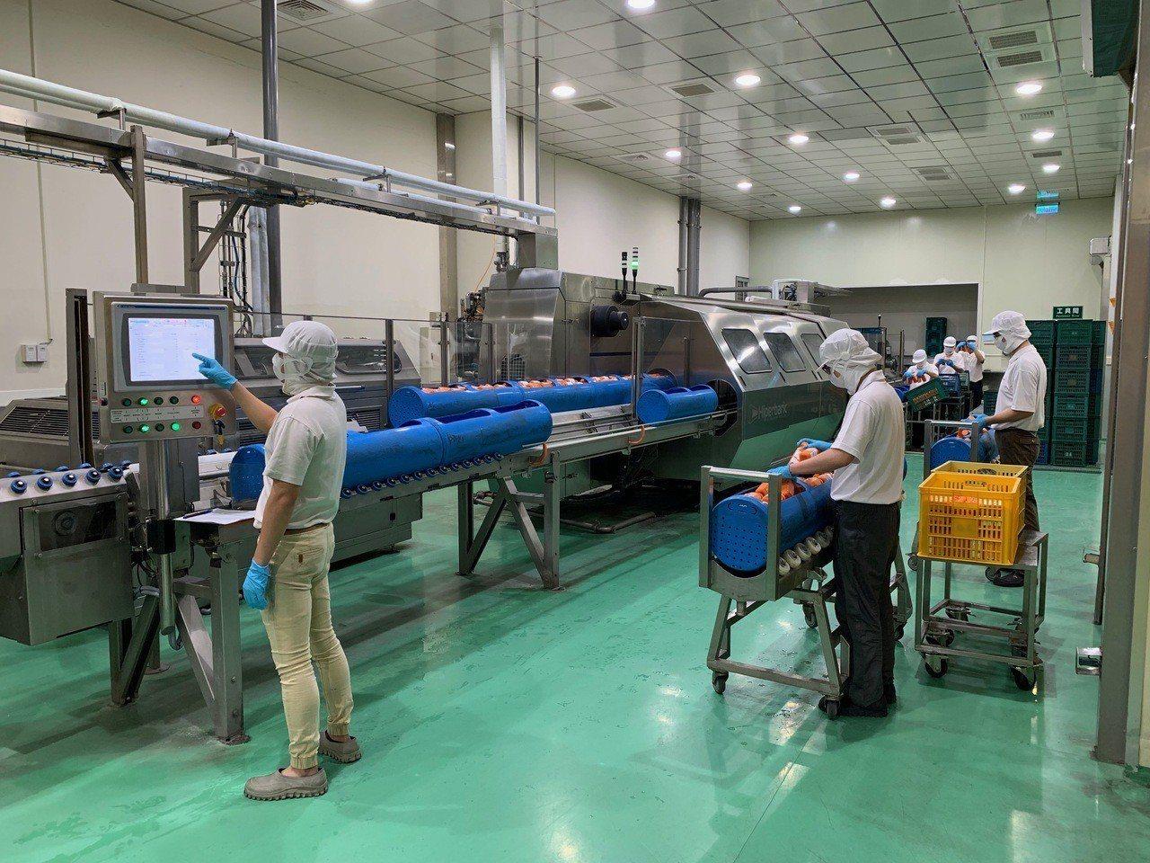 冷高壓滅菌技術需批次生產。圖/佳美食品提供