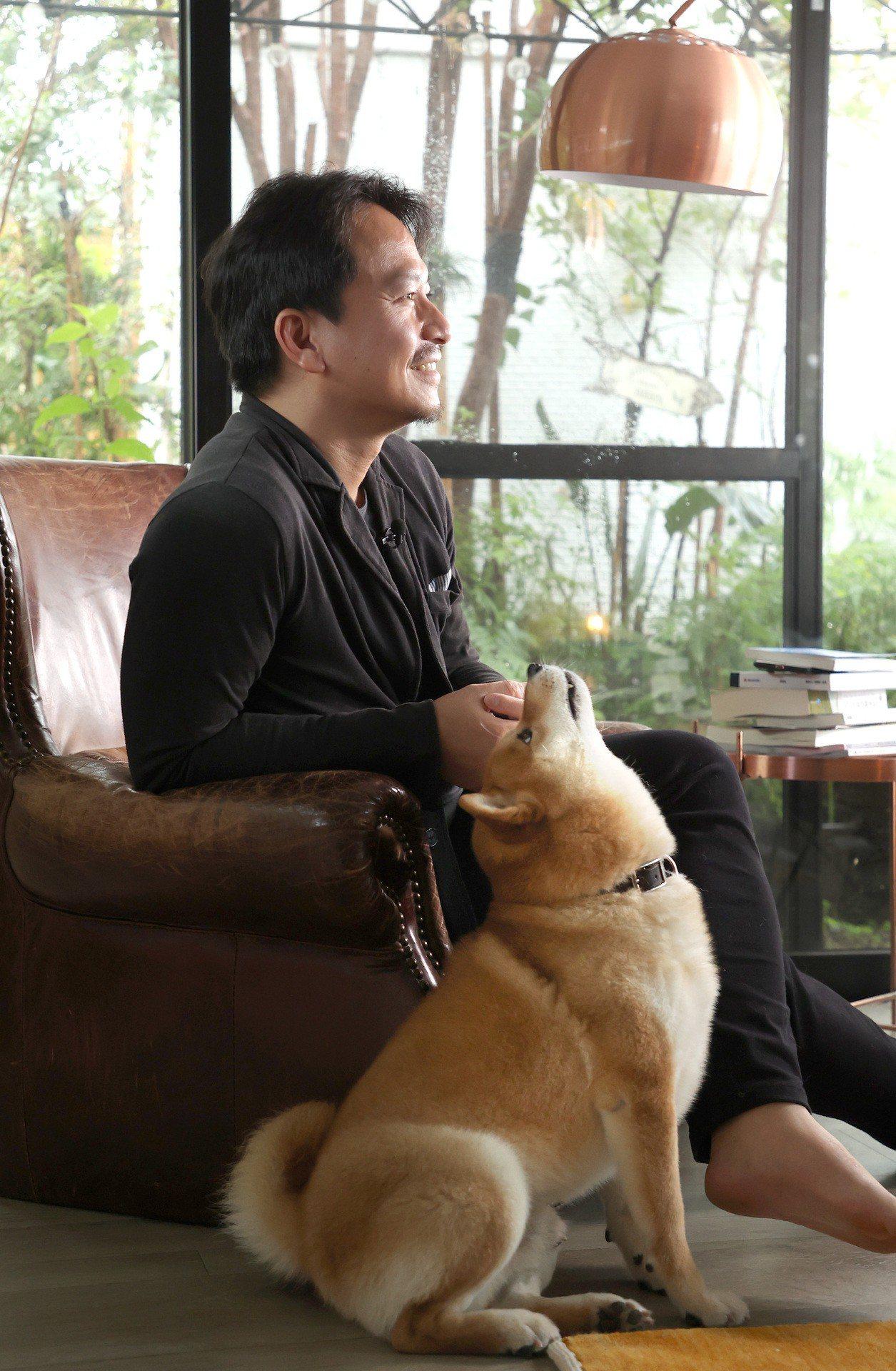 吳書原的柴犬「龍馬」。記者林澔一/攝影