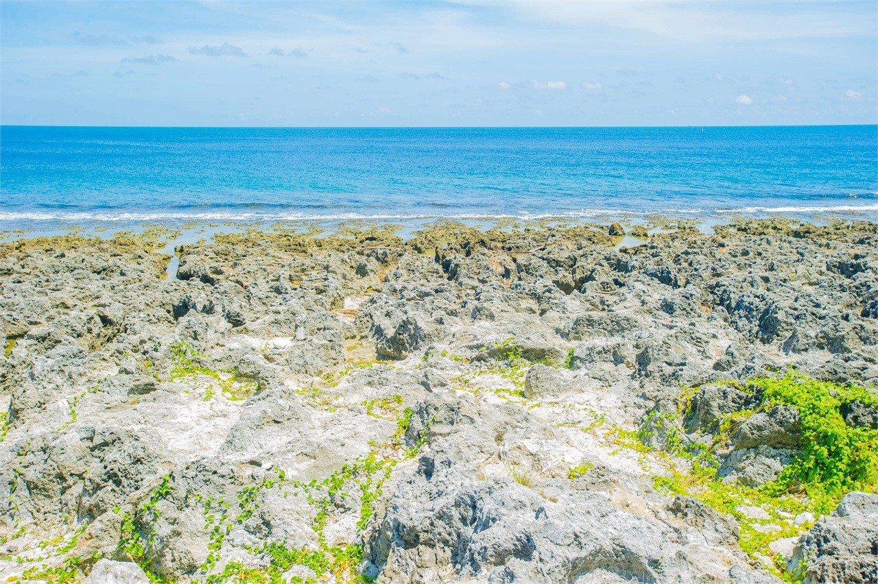 厚石裙礁。圖/擷自大鵬灣國家風景區網站