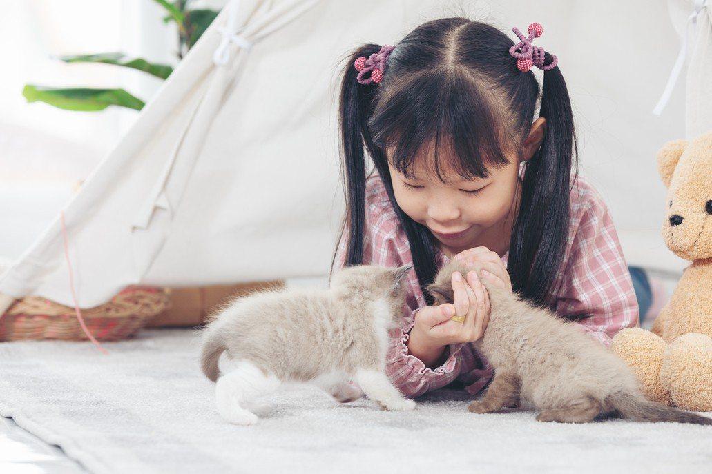 獸醫營培養小小獸醫。示意圖/ingimage