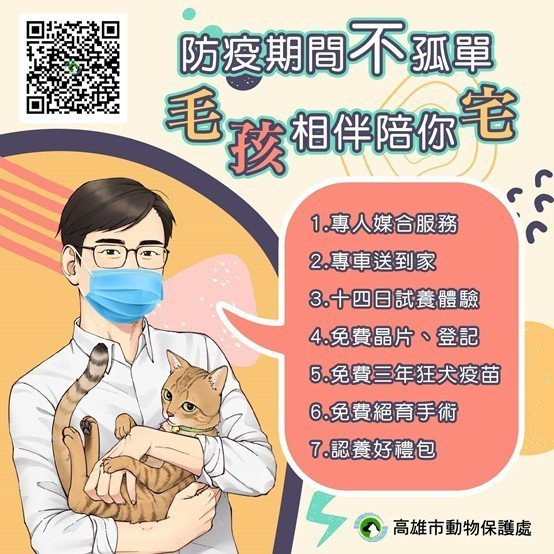 高雄市推出14天試養活動,讓民眾不用到收容所也可以認養犬貓(高雄市動保處提供 )