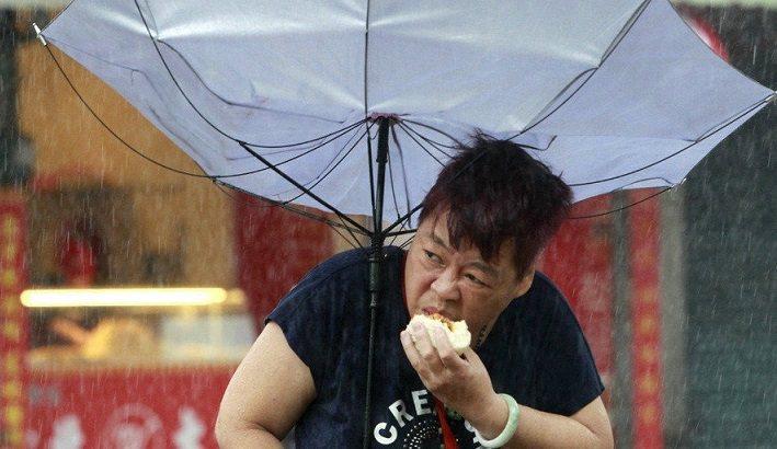 颱風天嗑肉包過馬路 趣照紅到國外