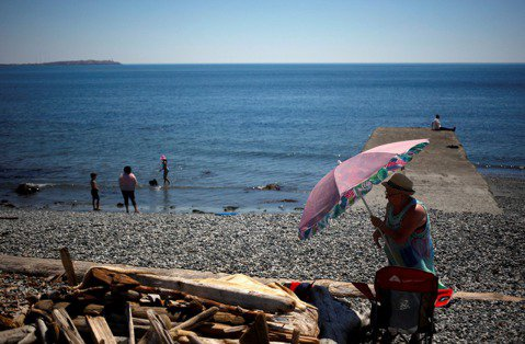 加拿大西岸卑詩省多日出現近攝氏50度的高溫,連海裡生物也遭殃,海邊出現數以萬計的...