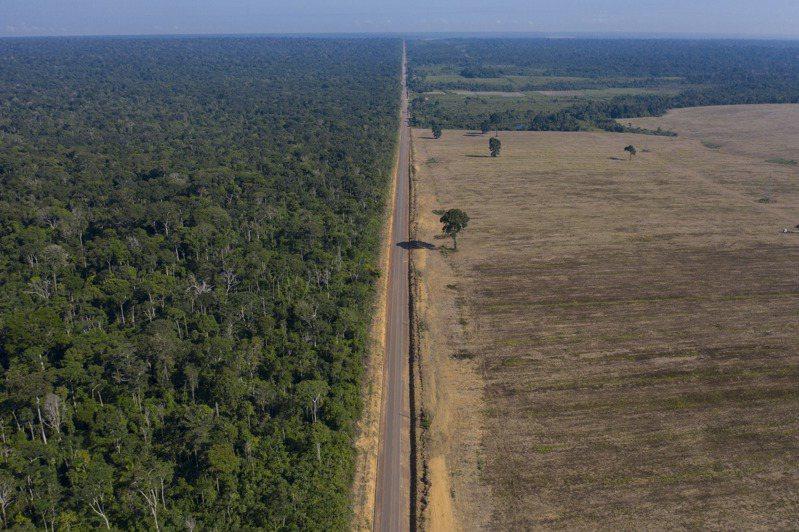 號稱「地球之肺」的亞馬遜雨林,近年由於過度開發,已從吸收碳吸收變成碳排放。圖為巴西興建公路,推平雨林。(美聯社)